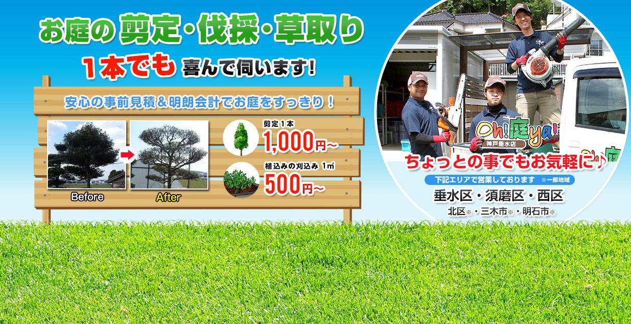 お庭の剪定・伐採・草取り 1本でも喜んで伺います!