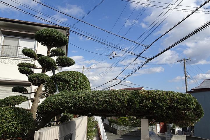 神戸市須磨区 S様邸その他の完成写真9