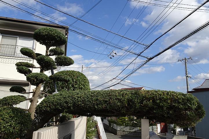 神戸市須磨区 S様邸その他の完成写真7