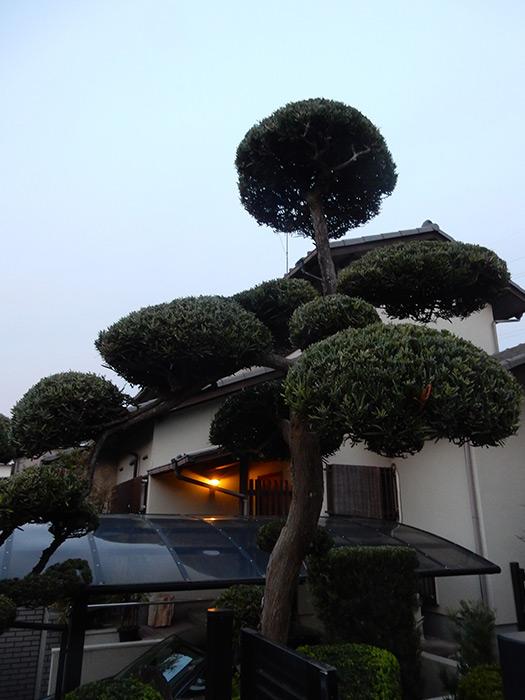 神戸市垂水区 N様邸の完成写真2