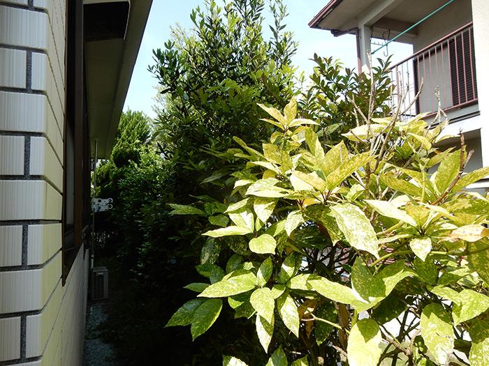 神戸市須磨区 O様邸 のビフォー画像5