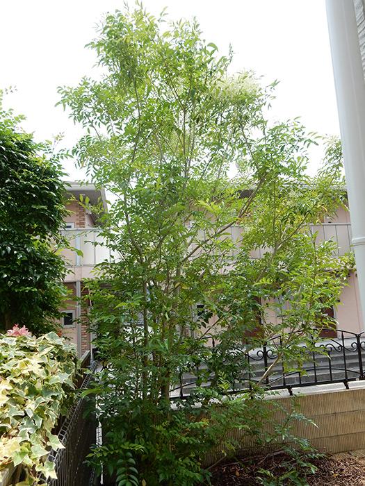 神戸市西区 K様邸 のビフォー画像2