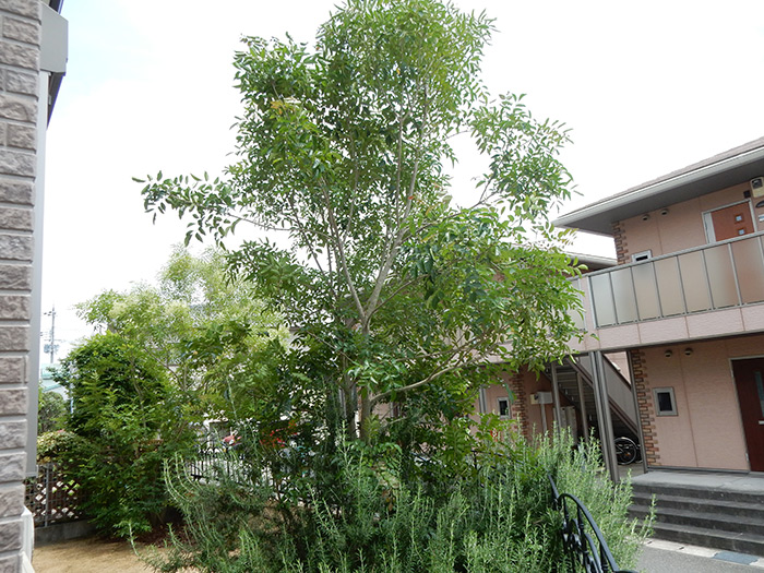 神戸市西区 K様邸 のビフォー画像4