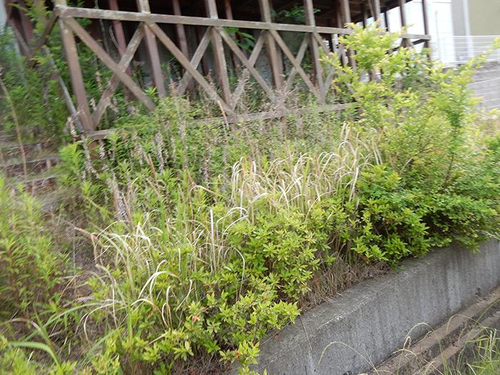神戸市須磨区 M様邸 のビフォー画像2