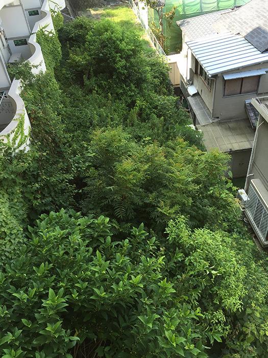 神戸市垂水区 のビフォー画像1