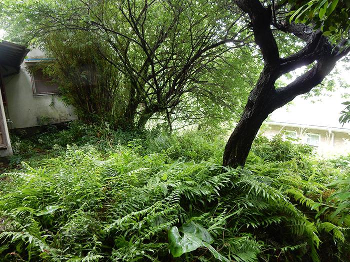 神戸市須磨区 Y様邸 のビフォー画像10