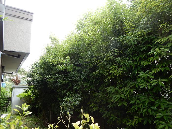 神戸市垂水区 A様邸 のビフォー画像4
