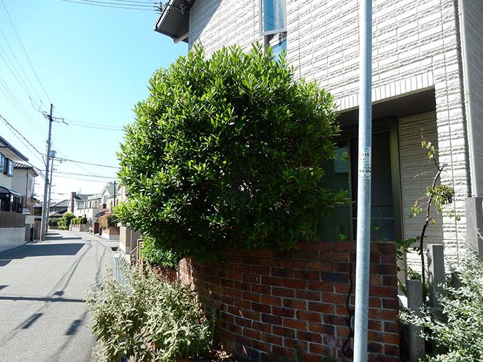 神戸市西区 O様邸 のビフォー画像4