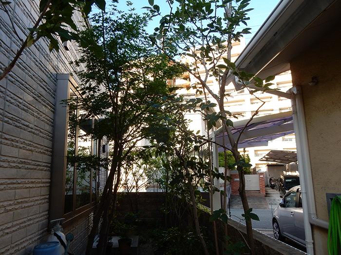 神戸市西区 O様邸 のアフター画像7