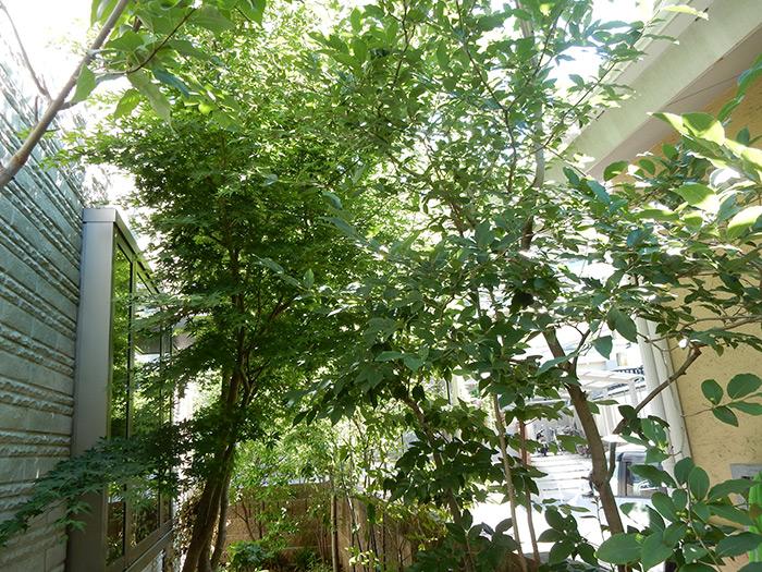 神戸市西区 O様邸 のビフォー画像7