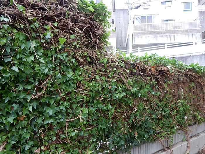 神戸市垂水区 A様邸 のアフター画像6