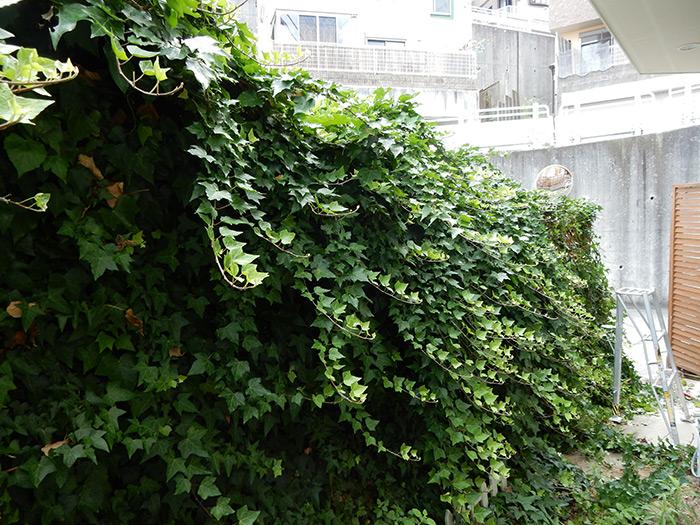 神戸市垂水区 A様邸 のビフォー画像6