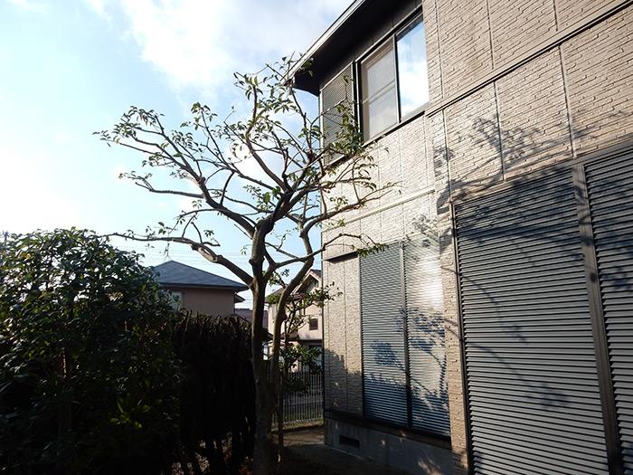 神戸市西区 M様邸 のアフター画像3