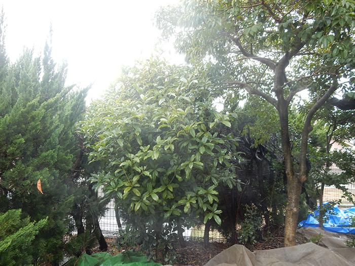 神戸市西区 M様邸 のビフォー画像4