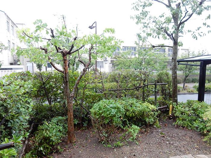 神戸市西区 I様邸 のアフター画像4