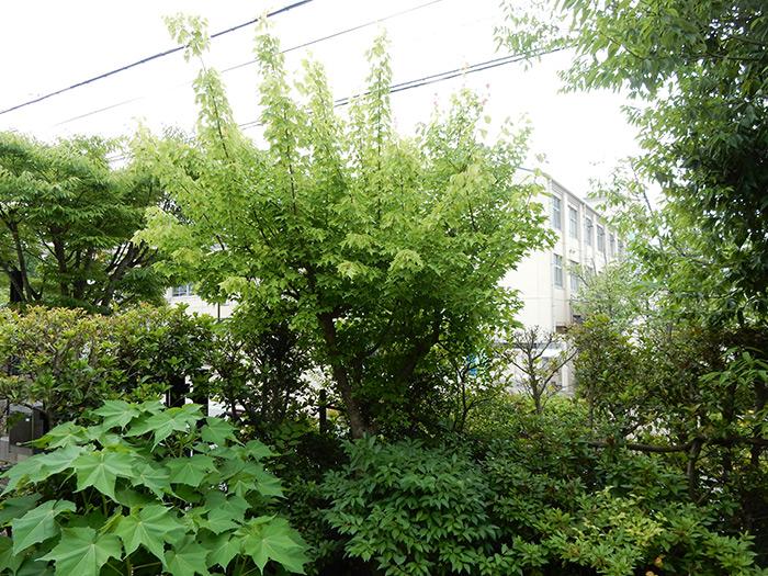 神戸市西区 I様邸 のビフォー画像4