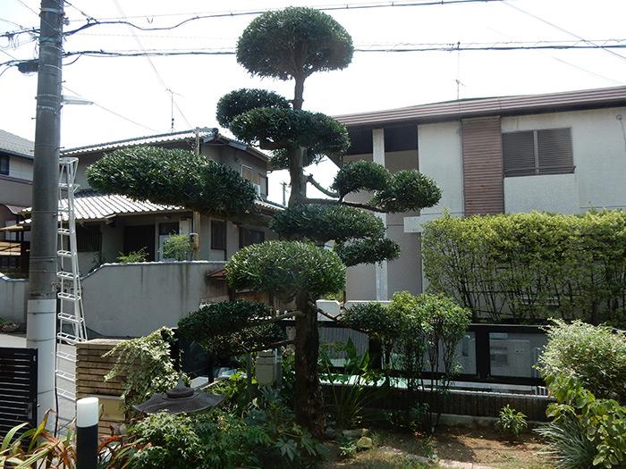 神戸市垂水区 S様邸 のアフター画像2