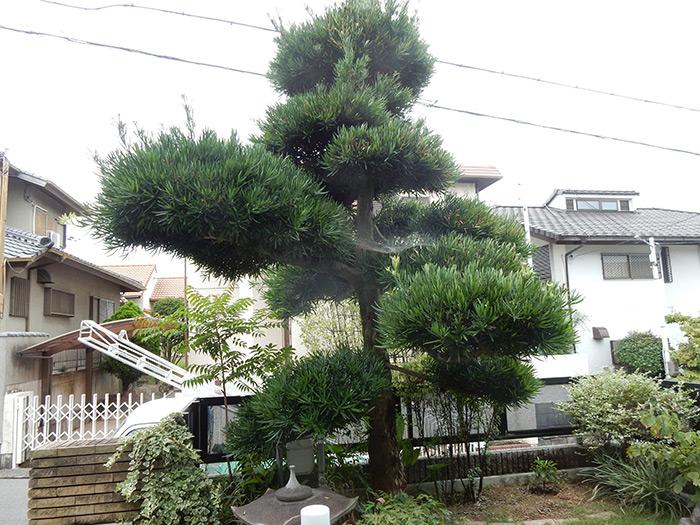 神戸市垂水区 S様邸 のビフォー画像2