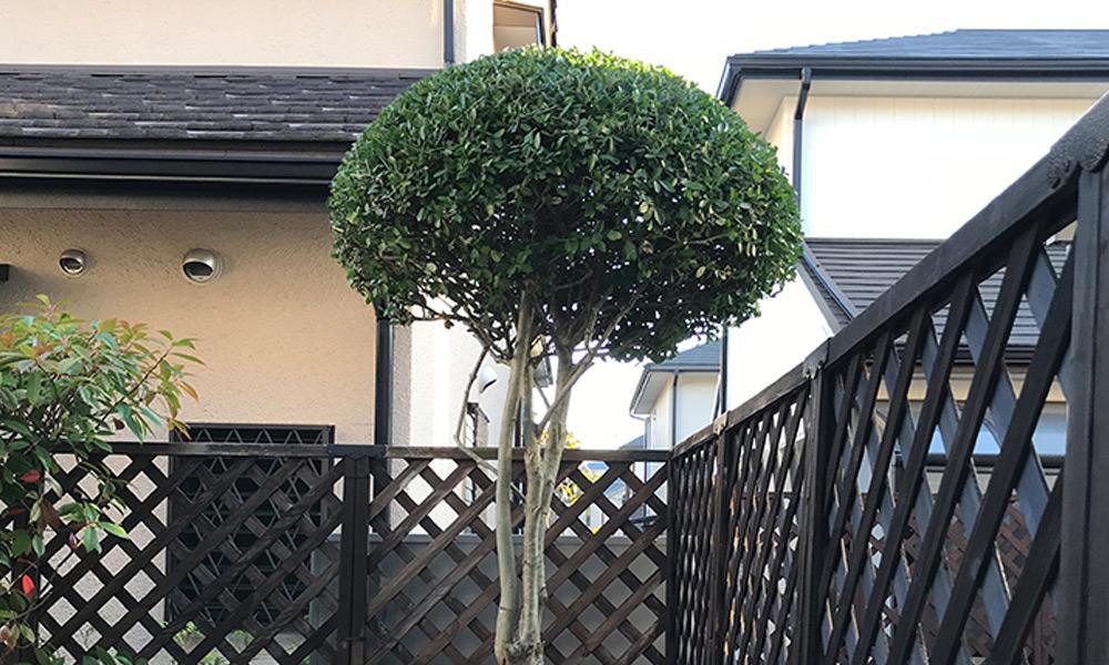 神戸市西区 W様邸