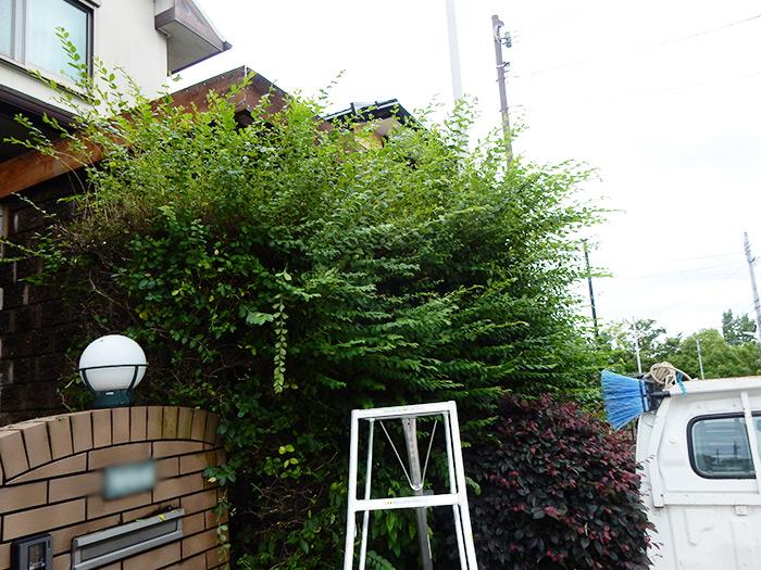 神戸市須磨区 F様邸 のビフォー画像1