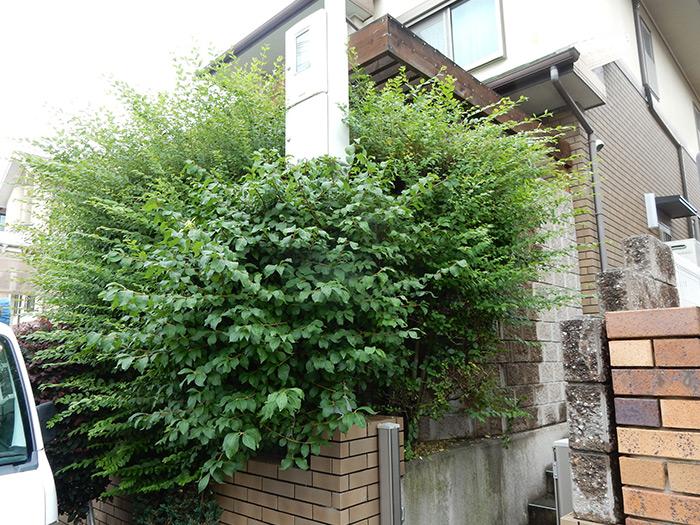 神戸市須磨区 F様邸 のビフォー画像2