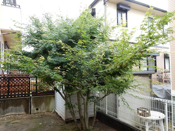 神戸市須磨区 F様邸 のビフォー画像3