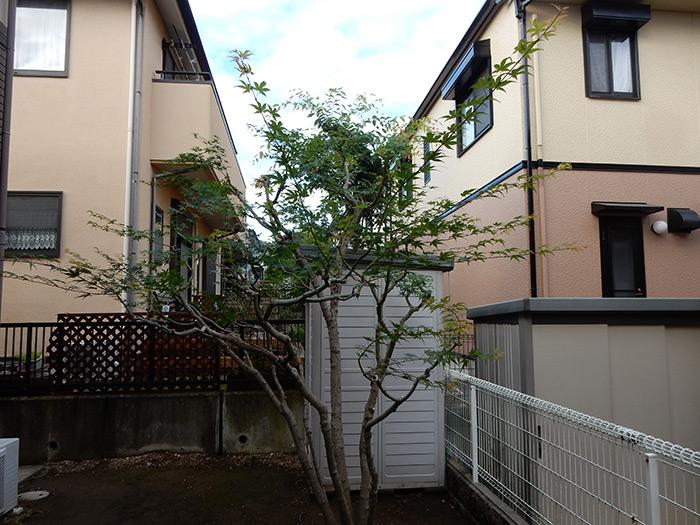 神戸市須磨区 F様邸 のアフター画像4