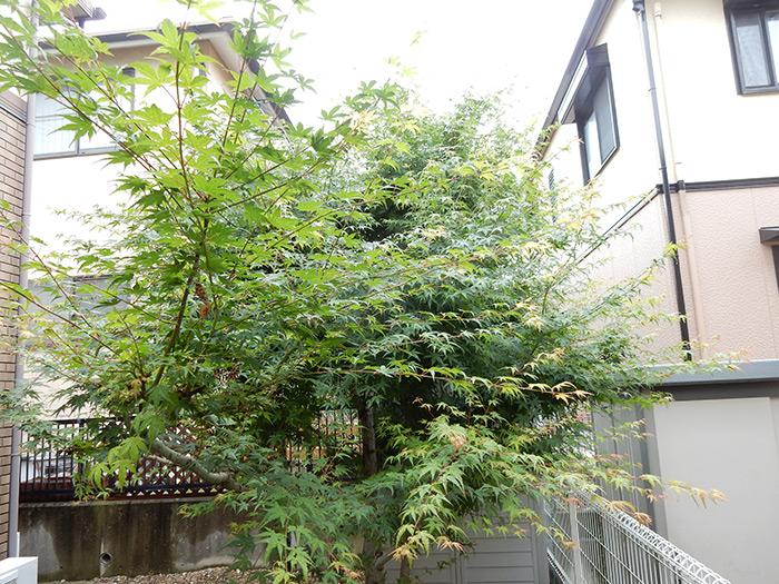 神戸市須磨区 F様邸 のビフォー画像4