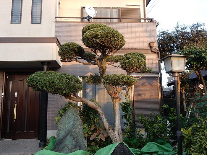 三木市 A様邸 のアフター画像4
