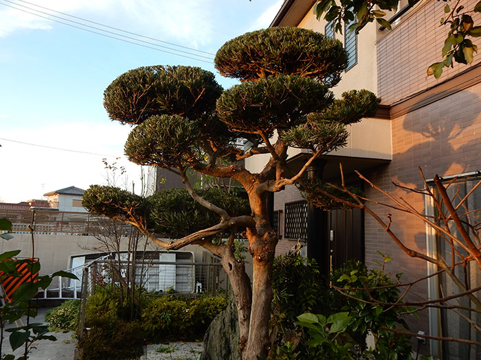 三木市 A様邸 のアフター画像5