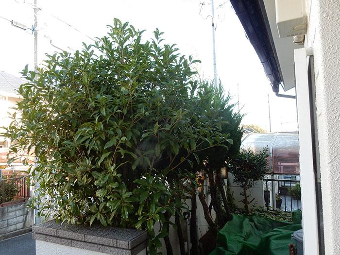 神戸市西区 K様邸 のビフォー画像5