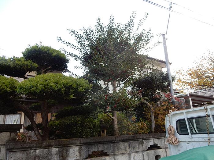 神戸市西区 T様邸 のビフォー画像2