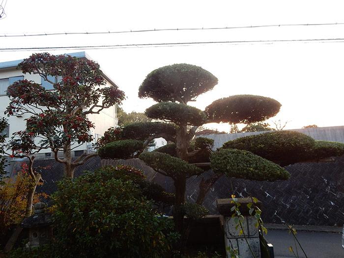 神戸市西区 T様邸 のアフター画像3
