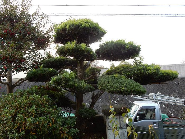 神戸市西区 T様邸 のビフォー画像3