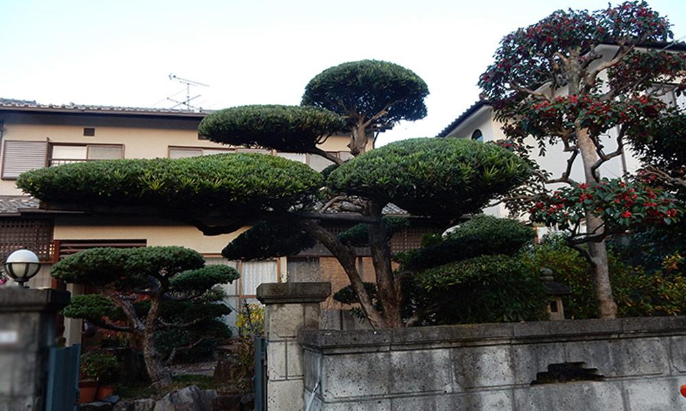 神戸市西区 T様邸