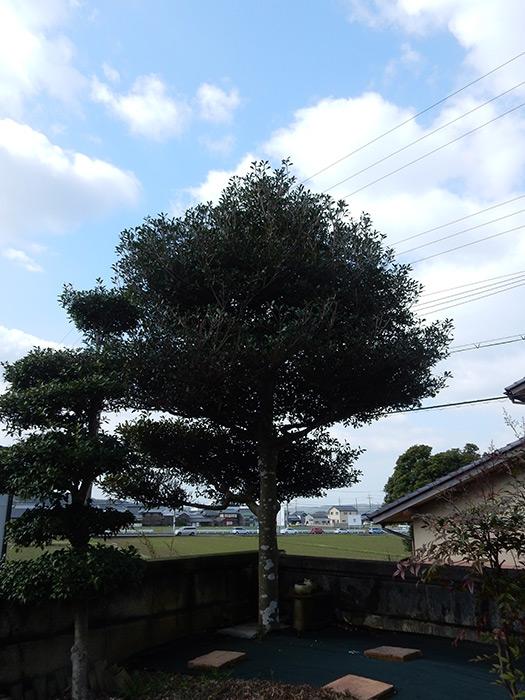 神戸市西区 N様邸 のビフォー画像1
