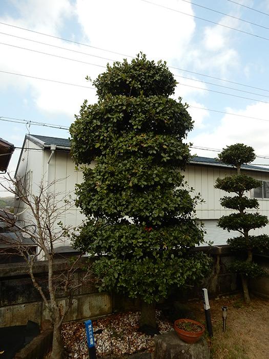 神戸市西区 N様邸 のビフォー画像2