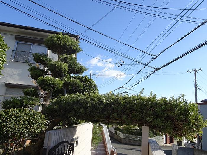 神戸市西区 S様邸 のビフォー画像4