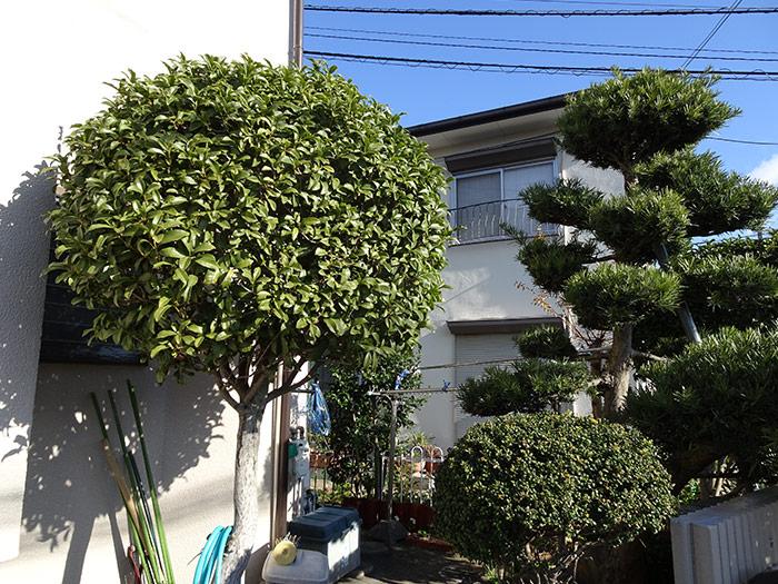 神戸市西区 S様邸 のビフォー画像5
