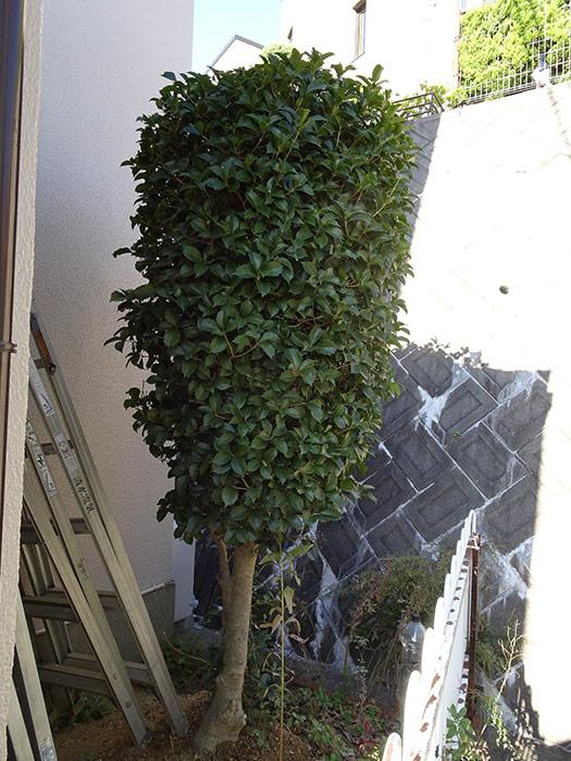 神戸市西区 S様邸 のビフォー画像6