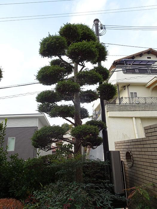 神戸市垂水区 M様邸 のビフォー画像3