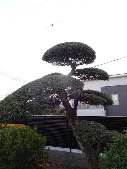 神戸市垂水区 M様邸 のアフター画像4