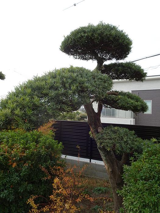 神戸市垂水区 M様邸 のビフォー画像4