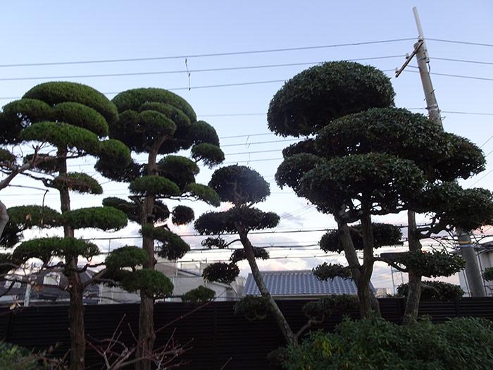 神戸市垂水区 M様邸 のアフター画像5