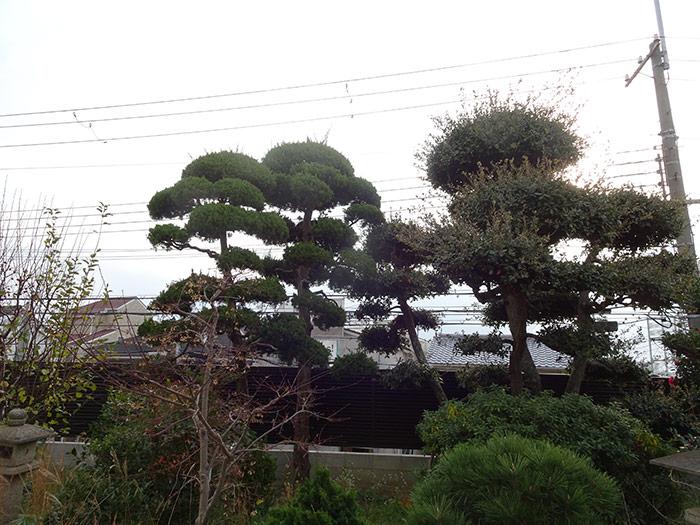神戸市垂水区 M様邸 のビフォー画像5