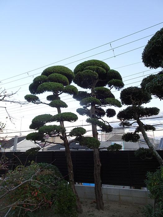 神戸市垂水区 M様邸 のアフター画像7