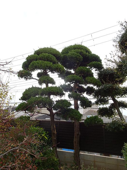 神戸市垂水区 M様邸 のビフォー画像7