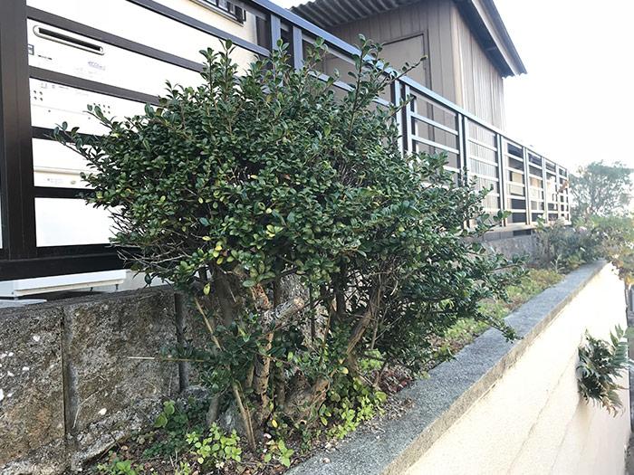 神戸市須磨区 H様邸 のビフォー画像3