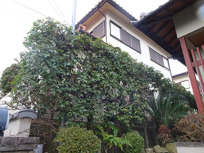 神戸市垂水区 K様邸 のアフター画像2