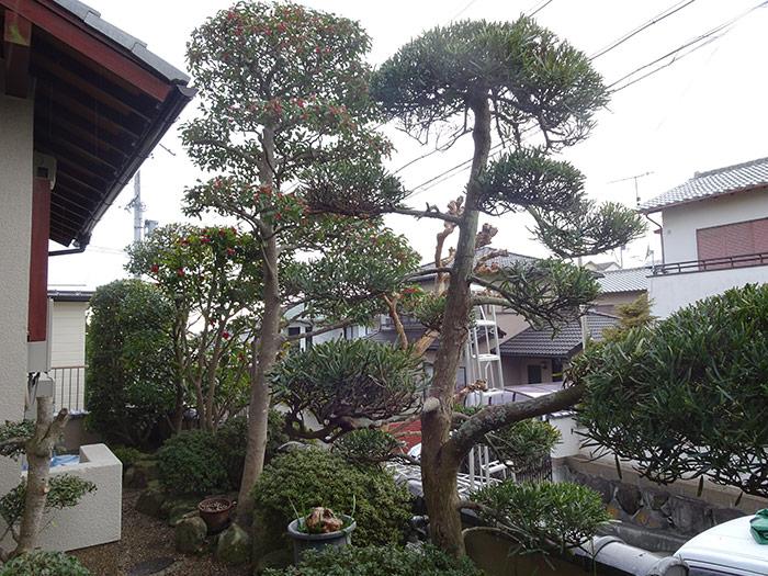 神戸市垂水区 K様邸 のアフター画像3
